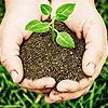 Soil Food Organic – Certified Organic